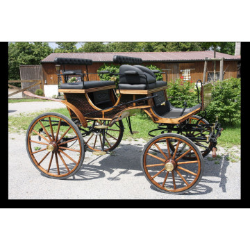Ungarischer Jagdwagen
