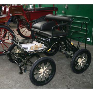 Shetty Mini Trainingswagen 12